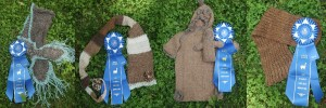 2014 blue ribbons etsy banner